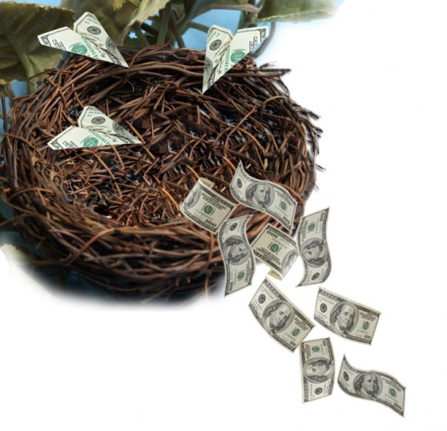 """Bird's nest with money flying into it and falling out of it"""